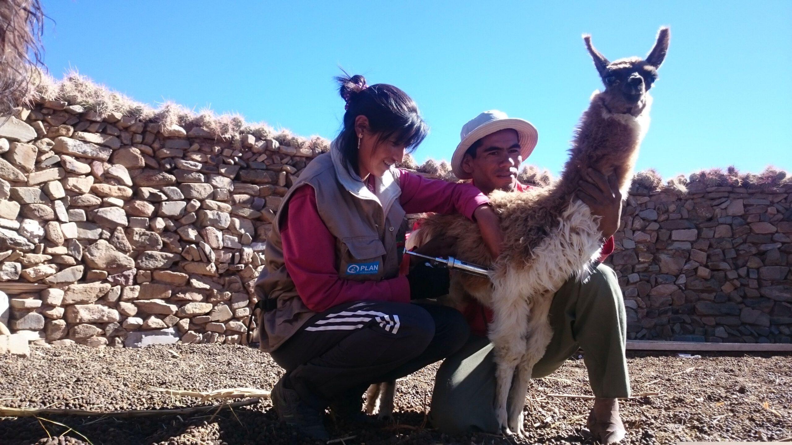 GNO0478_Veterinärkits_Plan International_Bild stammt aus einem ähnlichen Plan-Projekt in Bolivie_Bild1
